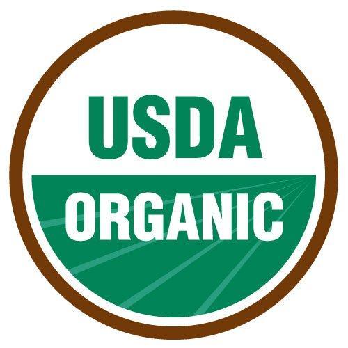 ORGANIC Turmeric 1400 mg - 120 tablets (USDA, 100% Vegetarian & Non-GMO)