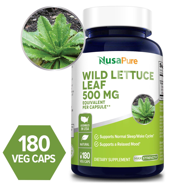 Wild Lettuce Leaf 500 mg - 180 Veg Caps (100% Vegetarian, Non-GMO & Gluten-free, Manufactured with Organic Wild Lettuce)