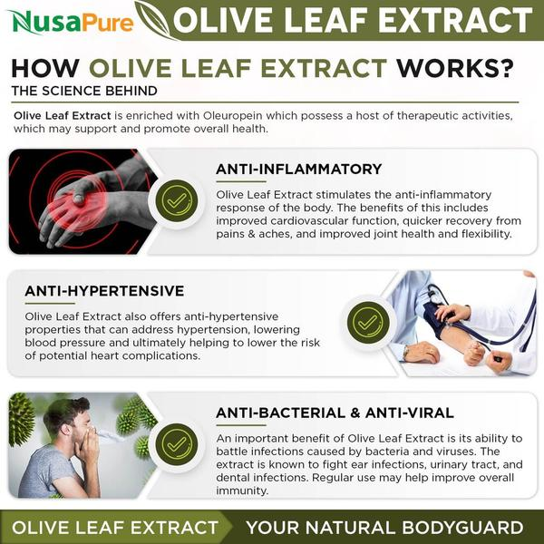 buy olive leaf extract